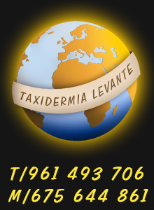 Logo taxidermia LEVANTE